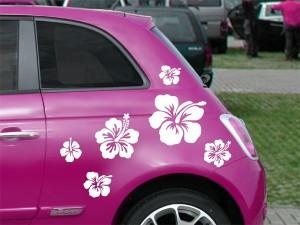 Autoaufkleber Hibiskus
